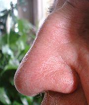 Anda Sakit Kepala & Keletihan? Hidung Anda Obatnya
