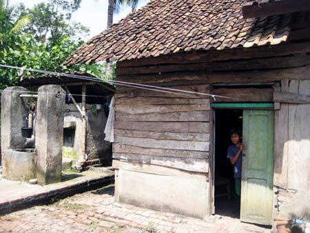 Rumah Supiah yang berada di Dusun Selorejo Desa Temurejo Kecamatan Bangorejo, Banyuwangi.
